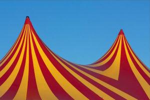 El CoNCA incrementa un 12% els ajuts al circ