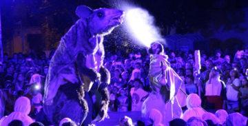 Les epidèmies en les festes tradicionals